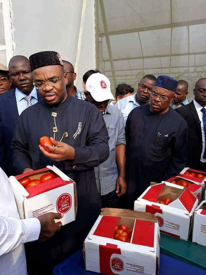 Photo of GOVERNOR UDOM EMMANUEL AND THE ONGOING AGRICULTURAL REVOLUTION IN AKWA IBOM