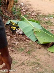 Octogenarian beheaded in Akwa Ibom