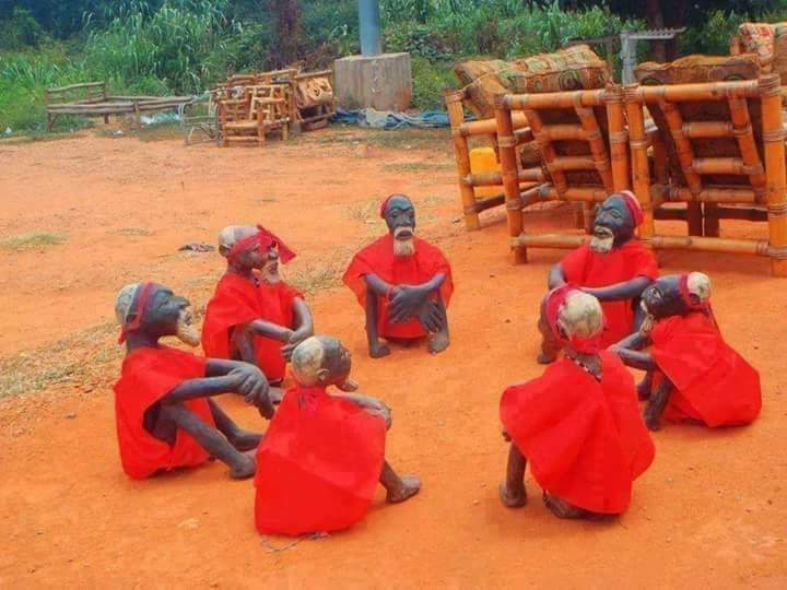 Photo of COVID-19 AND THE WITCHCRAFTCY OF AKWA IBOM APC